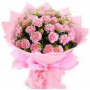 Send Carnation to Philippines