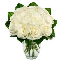 One Dozen White Roses Send To Philippines