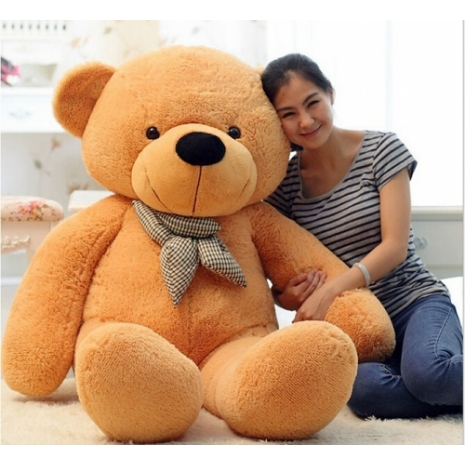4 feet giant bears to philippines