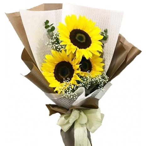 Long Stem 3 pcs Sunflowers Bouquet