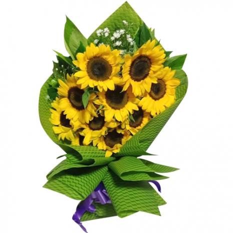 Long Stem 9 pcs Sunflowers Bouquet