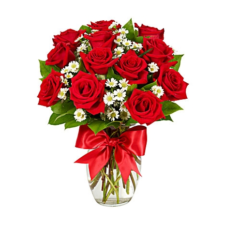 One Dozen Red Roses Send To Philippines