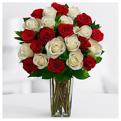 Buy 12 Red Roses and get 12 roses absolutely FREE! w/FREE VASE